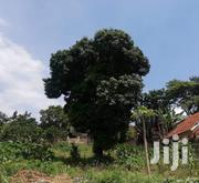 12 Decimals For Sale In Kireka | Land & Plots For Sale for sale in Central Region, Kampala