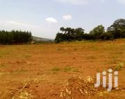 Mityana Road Muduuma: 1 Acre   Land & Plots For Sale for sale in Central Region, Wakiso