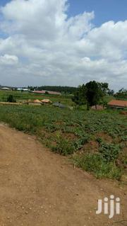 100ft*100ft/25decimals In Namugongo | Land & Plots For Sale for sale in Central Region, Wakiso