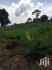 2 Square Miles In Luwero Mazzi Branch Off From Kikyusa | Land & Plots For Sale for sale in Central Region, Luweero