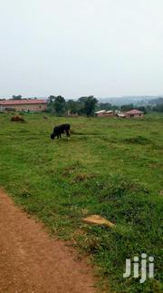 Seeta Lumuli Plots for Sale | Land & Plots For Sale for sale in Central Region, Mukono