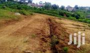 Sonde Behind Total Plots for Sale | Land & Plots For Sale for sale in Central Region, Mukono