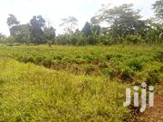 Plot of Land for Sale in Gayaza - Kasangati 50/💯 Ft | Land & Plots For Sale for sale in Central Region, Kampala