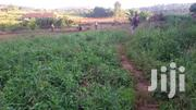 1 Acre in Arkright Golf Course but Owner Only Selling 50 Decimals | Land & Plots For Sale for sale in Central Region, Kampala
