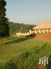 Masaka Road Maya Jandira 93 Acres | Land & Plots For Sale for sale in Central Region, Kampala