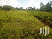 Mukona Plot of Land for Sale 💯/50ft | Land & Plots For Sale for sale in Central Region, Kampala