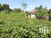 Plot Of Land In Kasangati Gayaza For Sale | Land & Plots For Sale for sale in Central Region, Kampala