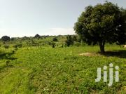 Land Along Budaka Mbale Highway For Sale | Land & Plots For Sale for sale in Eastern Region, Mbale