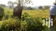 Land In Matugga Sanga For Sale | Land & Plots For Sale for sale in Central Region, Kampala