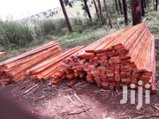 Top Qualitytimber | Building Materials for sale in Western Region, Masindi