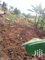 Plot Of Land At Kireka Bira For Sale | Land & Plots For Sale for sale in Central Region, Kampala