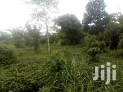 22 Titled Acres In Nabbuzi After Kamengo On Masaka Rd 200ft Off Main | Land & Plots For Sale for sale in Central Region, Mpigi