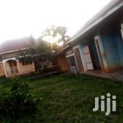 Three Bedroom House In Jomayi Seguku For Sale | Houses & Apartments For Sale for sale in Central Region, Kampala