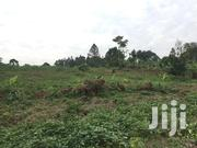 Land on Sale at Kabanga   Land & Plots For Sale for sale in Central Region, Mukono
