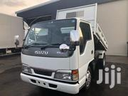 Isuzu Elf Truck Dump 2005 White | Trucks & Trailers for sale in Eastern Region, Busia