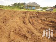 Land At Matugga Busikiri For Sale | Land & Plots For Sale for sale in Central Region, Wakiso