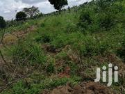 Land In Mukunda Mityana Road For Sale   Land & Plots For Sale for sale in Central Region, Mubende