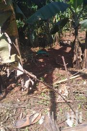 Land at Kakiri, 1 Acre | Land & Plots For Sale for sale in Central Region, Wakiso
