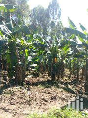 5 Acres Farm For Sale | Commercial Property For Sale for sale in Central Region, Wakiso