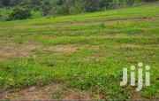 Magije Gayaza Road Behind Ugachick Plots For Sale | Land & Plots For Sale for sale in Central Region, Wakiso