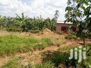 Plot of Land for Sale in Kira-Bulindo 50/💯 Ft | Land & Plots For Sale for sale in Central Region, Kampala
