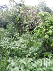 180 Acres in Nkozi at 5m | Land & Plots For Sale for sale in Central Region, Mpigi