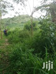 60 Acres in Gombe Good for Farming | Land & Plots For Sale for sale in Central Region, Mpigi