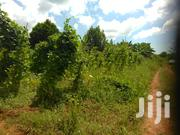 Very Hot 38 Decimals on Quick Sale in Nakawuka With Gd View and Title | Land & Plots For Sale for sale in Central Region, Kampala