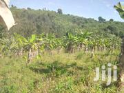 3 Acres of Land on Sale | Land & Plots For Sale for sale in Western Region, Kabalore