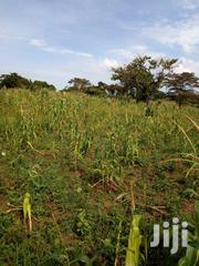 Matuga Kanyanda Paved 3km From the Tarmac. 3 Acres With Ready Title On | Land & Plots For Sale for sale in Central Region, Kampala