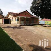 For Rent In Ntinda: Office Space Right On The Tarmac . | Houses & Apartments For Rent for sale in Central Region, Kampala