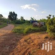 Land In Kasangati Town For Sale | Land & Plots For Sale for sale in Central Region, Kampala