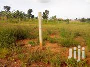 Najjera-Kungu 20 Decimals Land for Sale | Land & Plots For Sale for sale in Central Region, Kampala