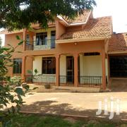 NAJJERA Executive Four Bedroom Double Storied Stand Alone House at 1.2 | Houses & Apartments For Rent for sale in Central Region, Kampala