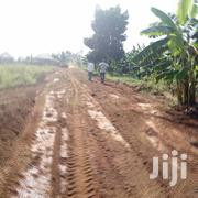 Several Plots on Sale in Busiika Town Each  | Land & Plots For Sale for sale in Central Region, Kampala