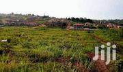 Entebbe Road Kawuku Bwerenga Plots For Sale | Land & Plots For Sale for sale in Central Region, Wakiso