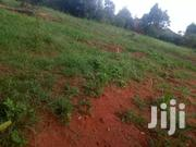 Titled Plot On Sell In Sissa | Land & Plots For Sale for sale in Western Region, Kisoro