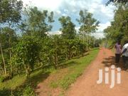Full Acre on Quick Sale in Katende An | Land & Plots For Sale for sale in Central Region, Kampala