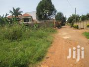 Three Plots of 21 Decimals Each in Munyonyo | Land & Plots For Sale for sale in Central Region, Kampala