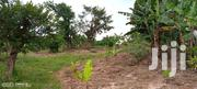 🇺🇬MITYANA ROAD JAMILU: Plots 50x100 at 20m (Negotiable)🇺🇬 | Land & Plots For Sale for sale in Central Region, Mpigi