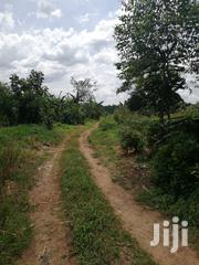 1 Acre in Bujuko Tumukunde's Side for Sale | Land & Plots For Sale for sale in Central Region, Wakiso