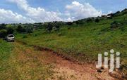 Land In Bukerere Hill View Estate For Sale | Land & Plots For Sale for sale in Central Region, Mukono