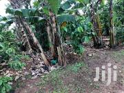 620 Acee in Kapeka 3km From Town for Sale at 4m Per Acre | Land & Plots For Sale for sale in Central Region, Luweero