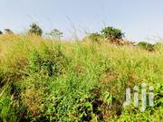 4 Acres Land At Bujuko For Sale | Land & Plots For Sale for sale in Central Region, Kampala