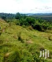 13 Acres for Sale in Nyenga at 11m/Acre | Land & Plots For Sale for sale in Central Region, Mukono
