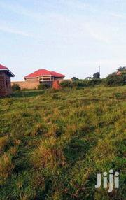 Land In Nsasa Hill View For Sale   Land & Plots For Sale for sale in Central Region, Wakiso