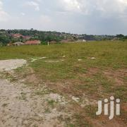 Land for Sale in Gayaza Town at UGX 33m | Land & Plots For Sale for sale in Central Region, Kampala