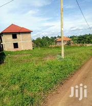 Sonde Behind Total Plots for Sale. | Land & Plots For Sale for sale in Central Region, Mukono