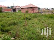 Namugongo 50/100fts Plot for Sale | Land & Plots For Sale for sale in Central Region, Kampala