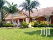 Gorgeous 4 Bed Roomed Bungalow In Naguru Self Contained | Houses & Apartments For Rent for sale in Central Region, Kampala
